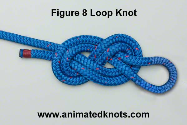 figure_8_loop_knot
